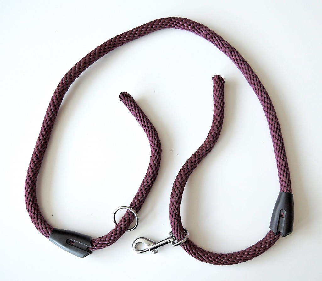 Leash with Plastic Clamps